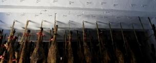 Hams Drying