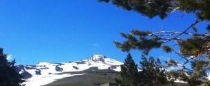 Sierra Nevada Early June