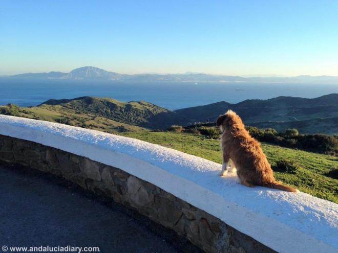 Andalucia Atlantic Coast Tarifa Andrew Forbes (6)