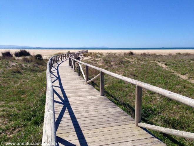 Andalucia Atlantic Coast Tarifa Andrew Forbes (7)
