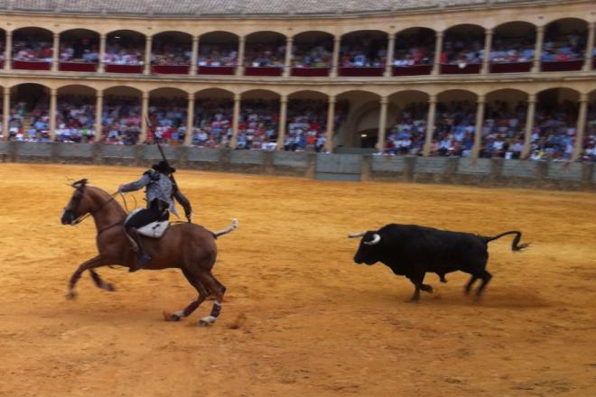Andalucia Diary Rejones Ronda 2013