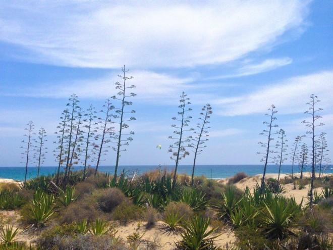 Cabo de Gata Nijar National Park Andalucia