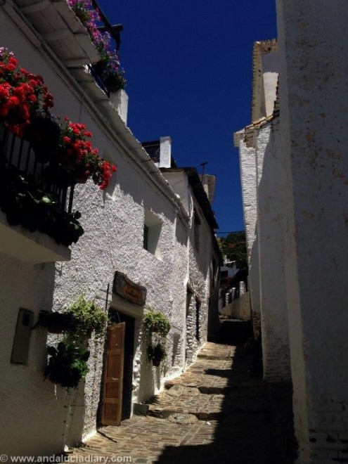 Capileira Las Alpujarras (10)