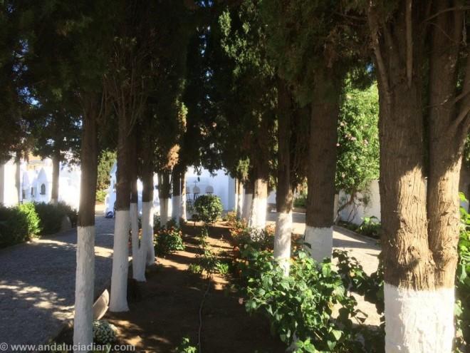 Cementerio San Sebastian Casabermeja A Forbes Andalucia Diary  (9)