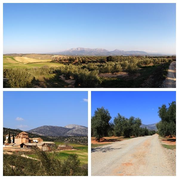 Cortijo del Marques Granada Andalucia Diary Country access