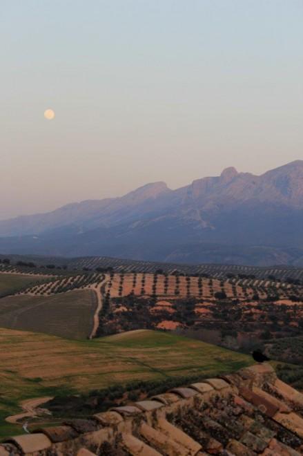 Cortijo del Marques Granada Andalucia Diary (7)