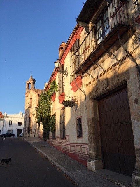 el-palacio-de-san-benito-andrew-forbes-andalucia-diary-9
