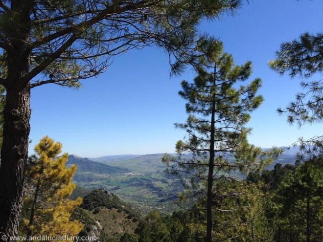 Grazalema natural Park Andalucia Diary (8)