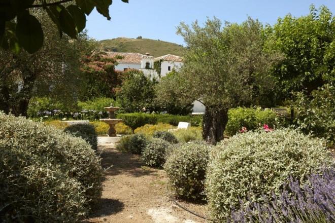 Jardines Hotel Molino del Arco. Vista fuente