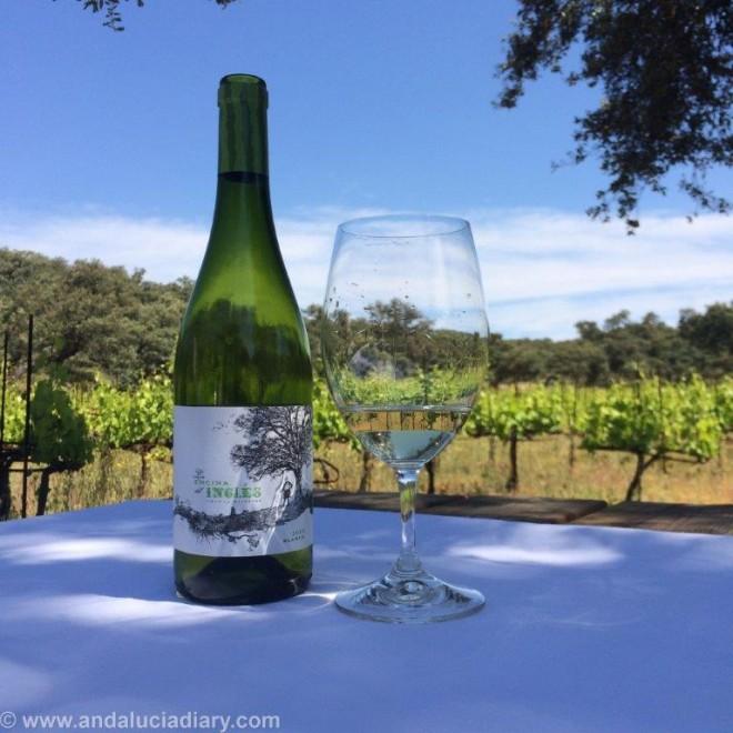 La Melonera Ronda Winery Andalucia Diary (2)