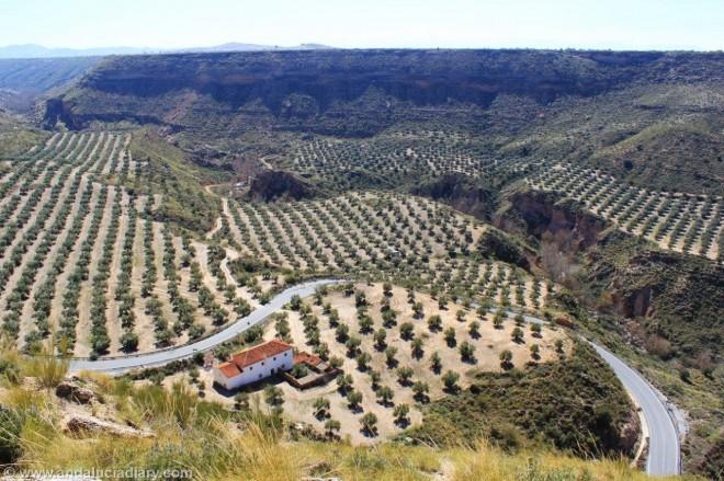 Megalithic route Guadix Granada Andalucia Diary (17)