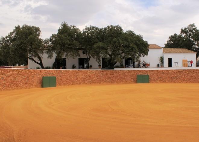 Reserva de Tauro, Plaza with 'albero' sand, © Andrew Forbes