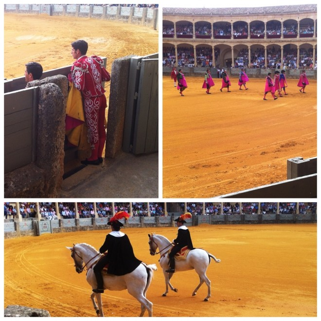 Ronda Rejones 2013 Bullfighting Spain