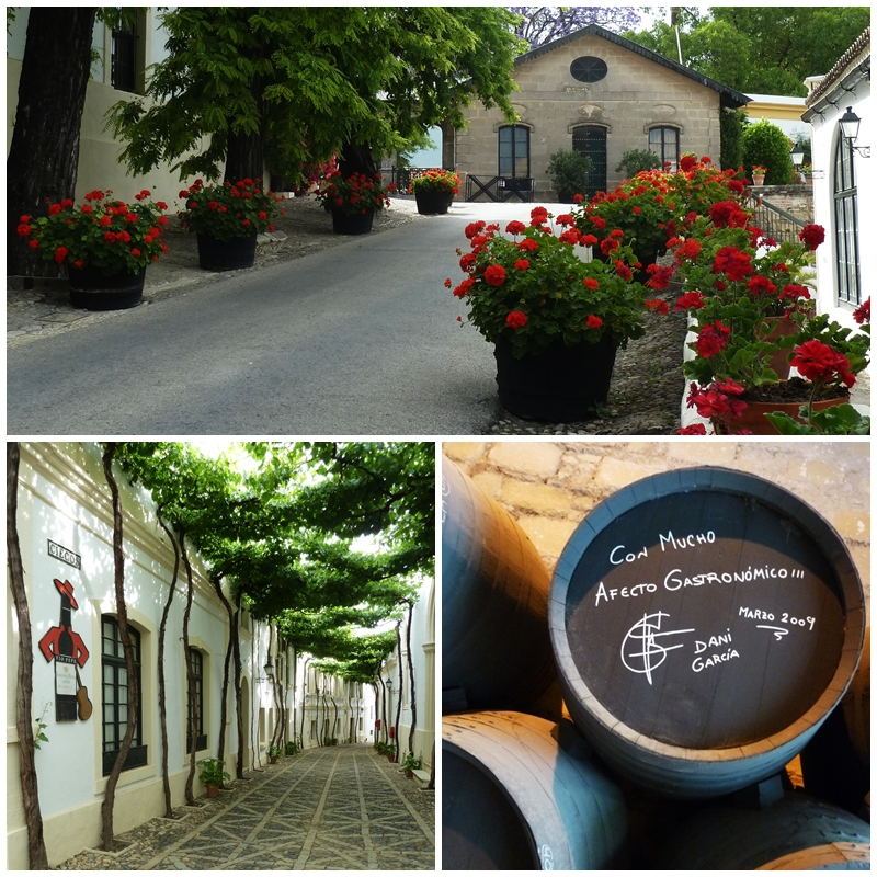 Sherry Tour, Jerez de la Frontera Gonzales Byass