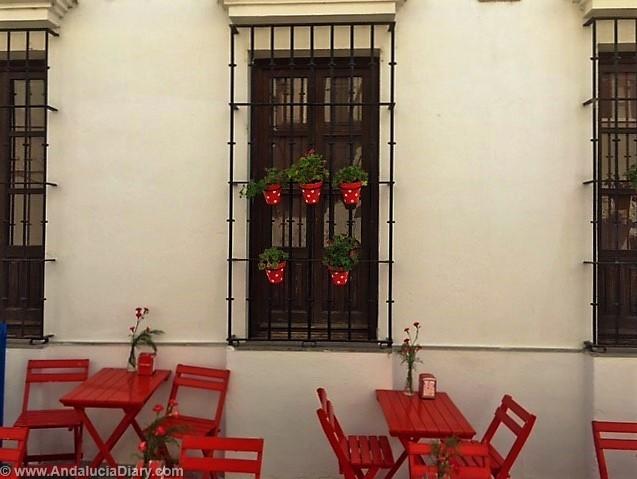 Taberna Jovenes Flamencos Arcos de la Frontera (5)