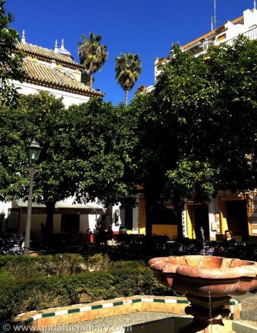 Tapas Tour in Seville Andalucia Diary  (11)