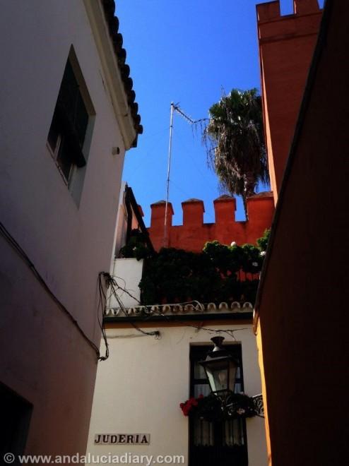 Tapas Tour in Seville Andalucia Diary  (12)