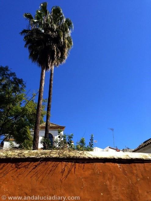 Tapas Tour in Seville Andalucia Diary  (13)