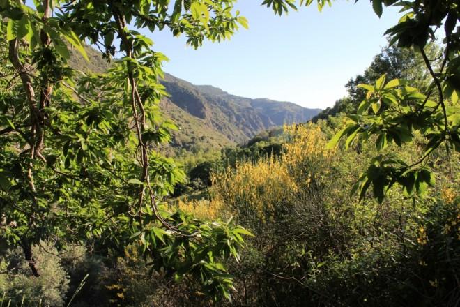 View Hiking Mecina Fondales Alpujarras, Andalucia