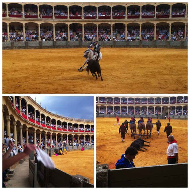 bullfighting Spain Ronda Andalucia Diary Andalusia