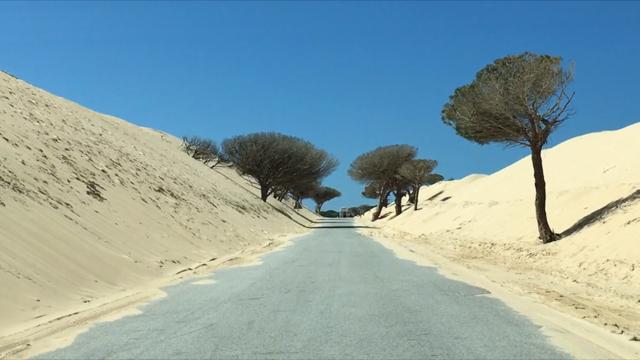 dune at punta paloma tarifa