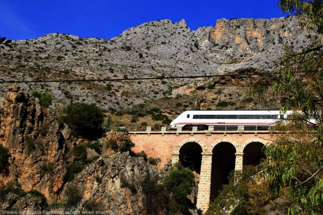 local malaga to ronda train through el chorro