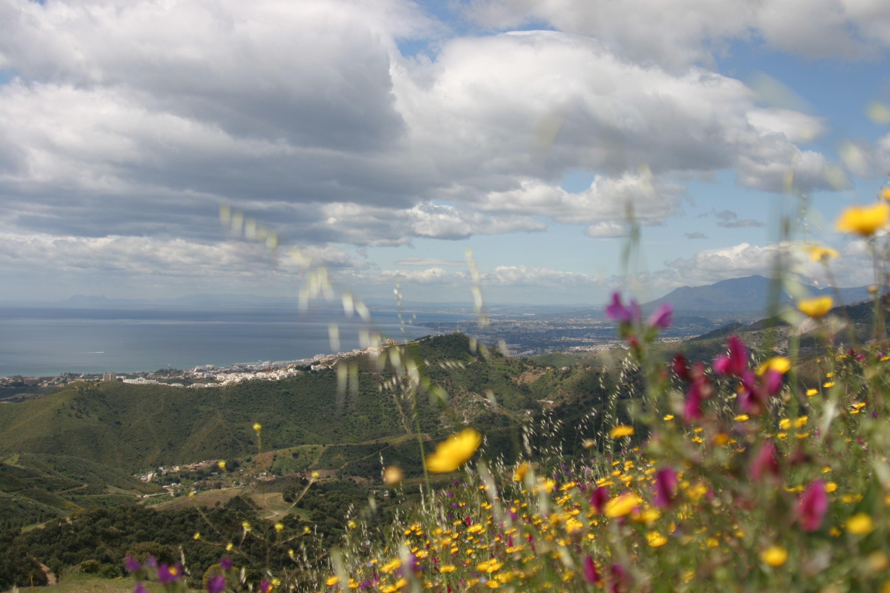 Altos de Los Monteros & Marbella