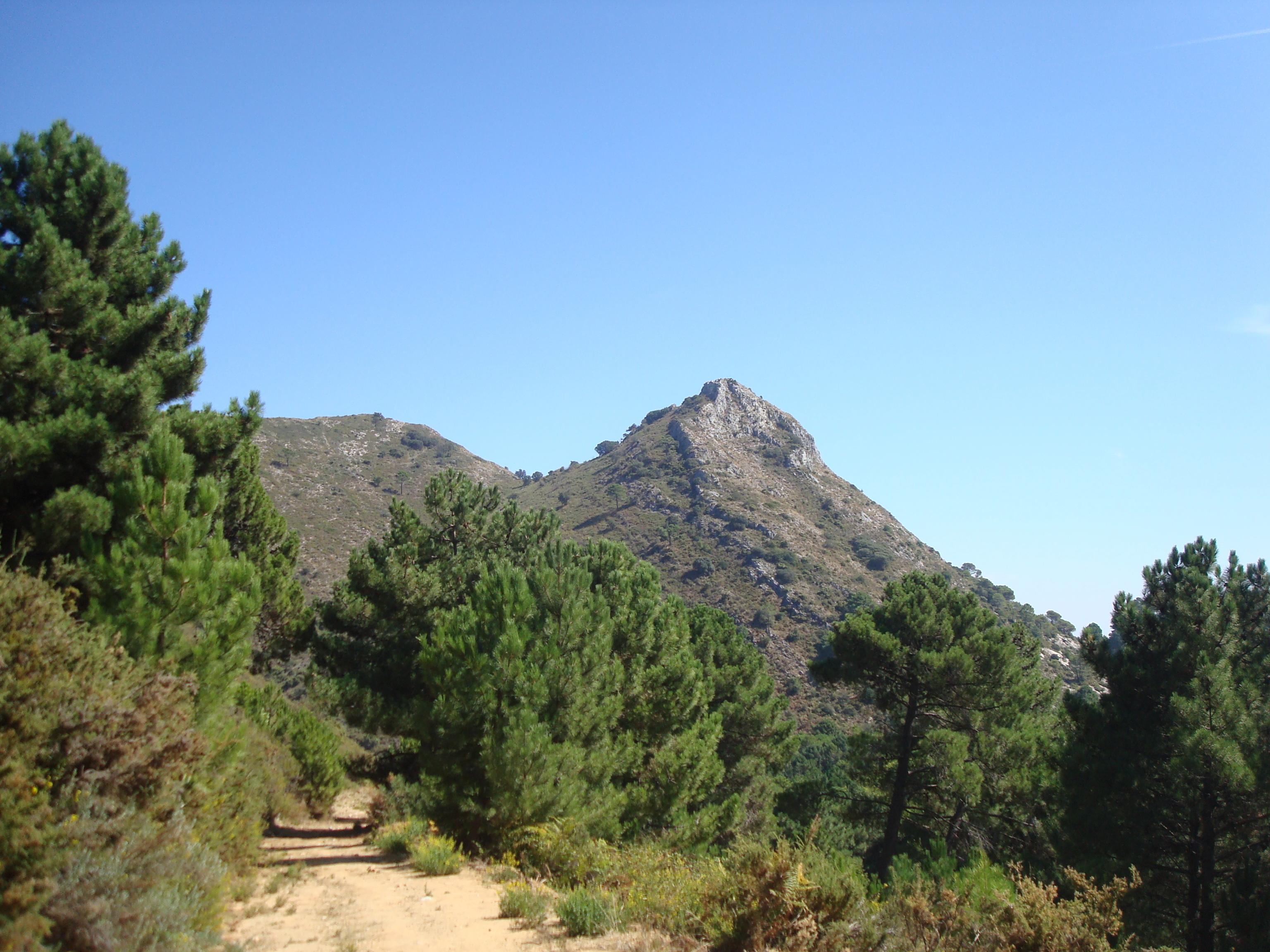 Ojen Mountains, www.andrewforbes.com