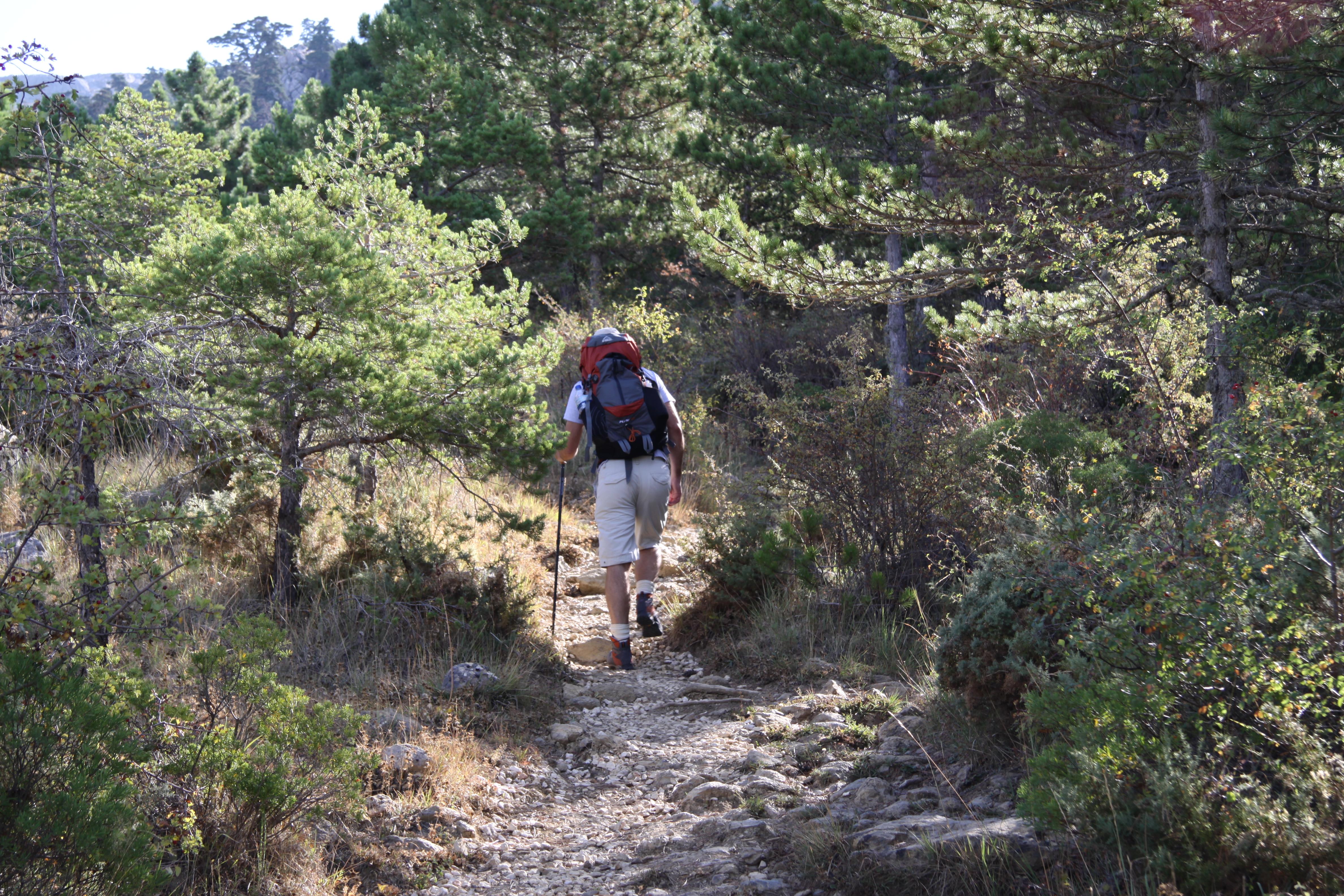 30 percent up la torrecilla, sierra de las nieves www.andrewforbes.com