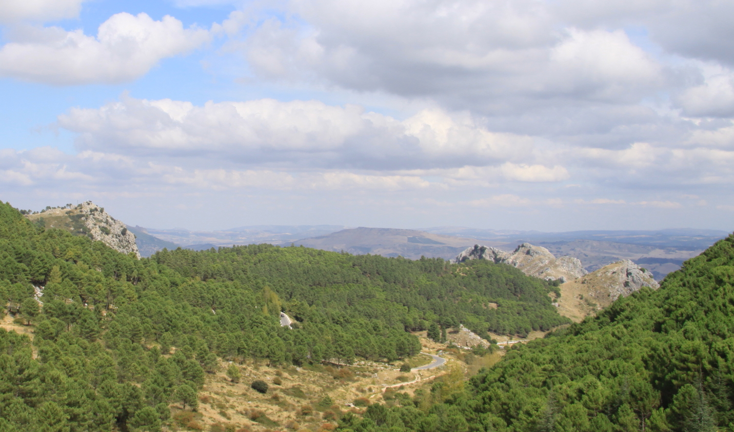 Towards Grazalema Village