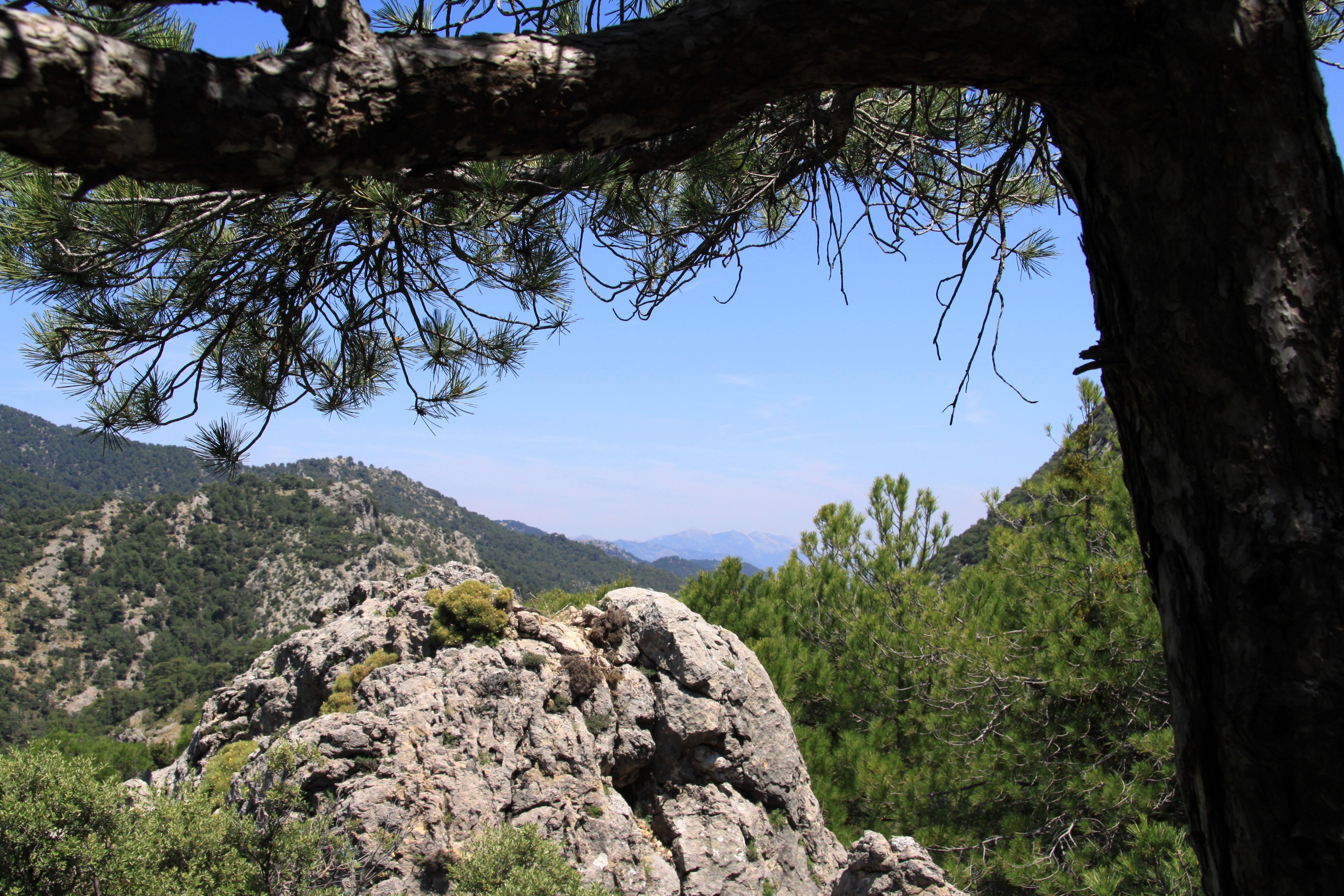 View_Cazorla_Natural_Park_www.andrewforbes.com