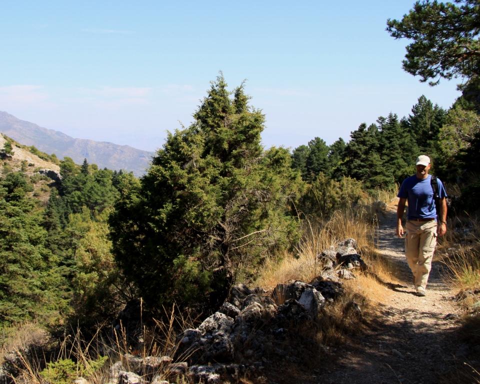 Sierra_de_las_nieves_natural_park_yunquera_hiking_senderismo_rutas_andrew_forbes_me_walking
