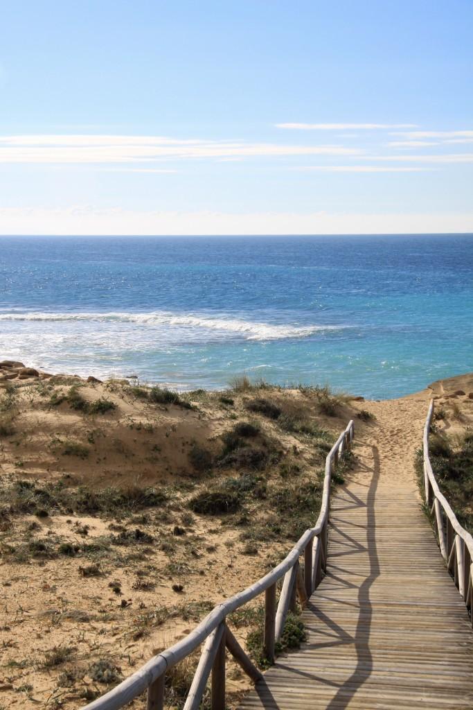 Cabo de Trafalgar Cadiz Province Andrew Forbes