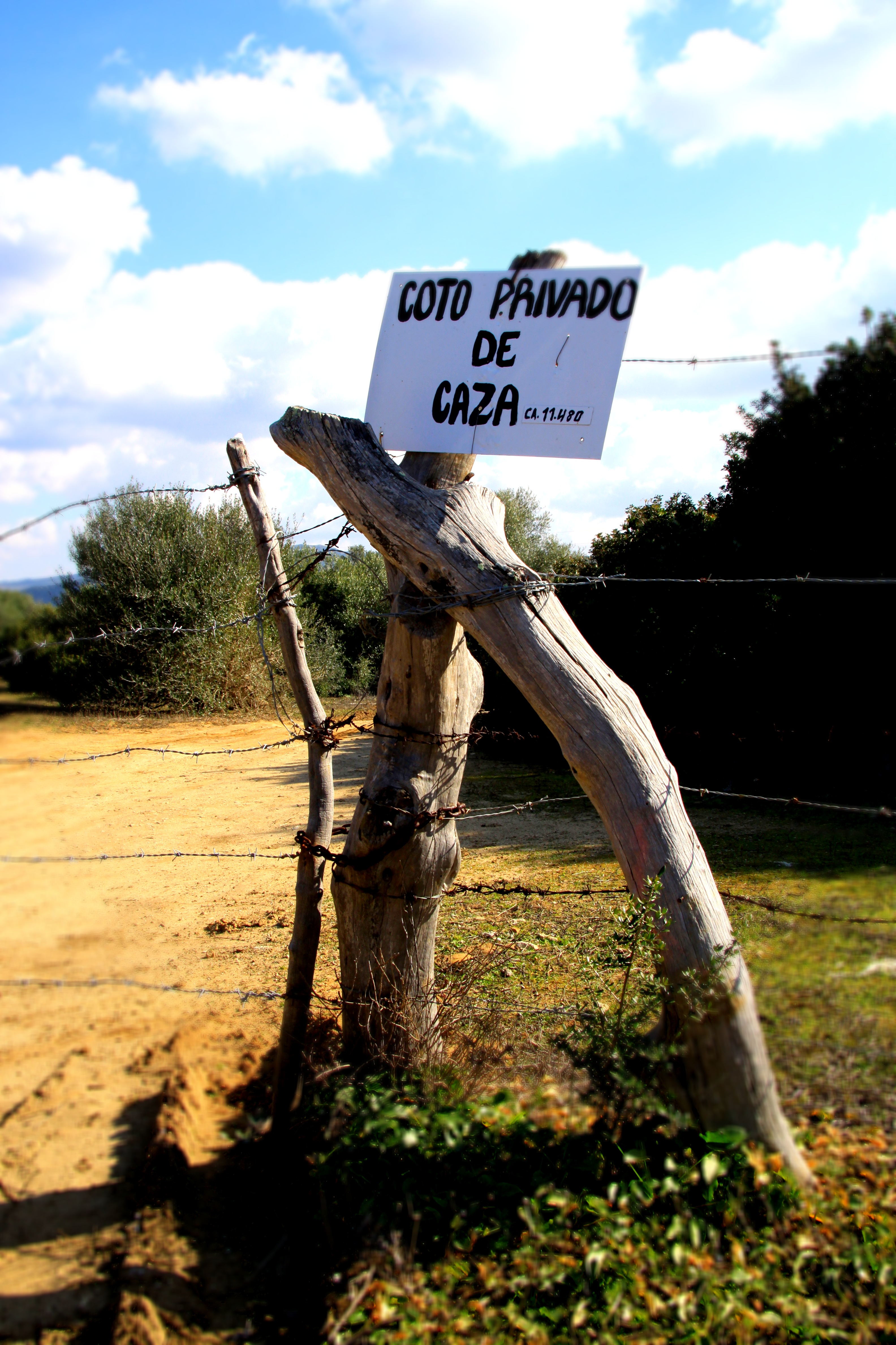 Hunting sign_Alcornocales, Cadiz Province_andrew_forbes