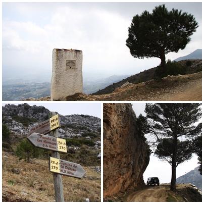 Camino_de_la_dehesa_andrew_forbes
