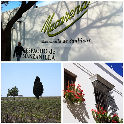 Sanlucar de Barrameda - Home of Manzanilla
