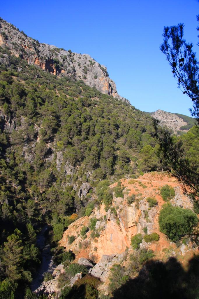 View_from_el_puerto_de_la-mujer_sierra_de_las_nieves
