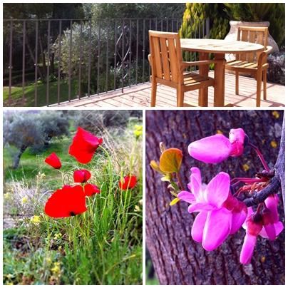 Garden Terrace of our Suite at the Fuente de la Higuera Boutique Hotel in Ronda