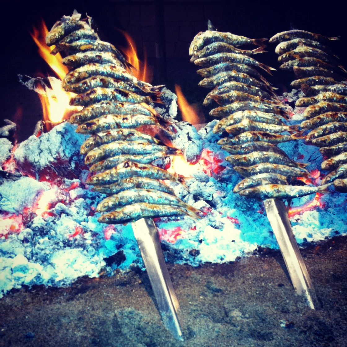 Espetos - sardine skewers andalucia andrew forbes