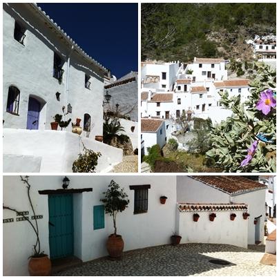 El acebuchal rural houses