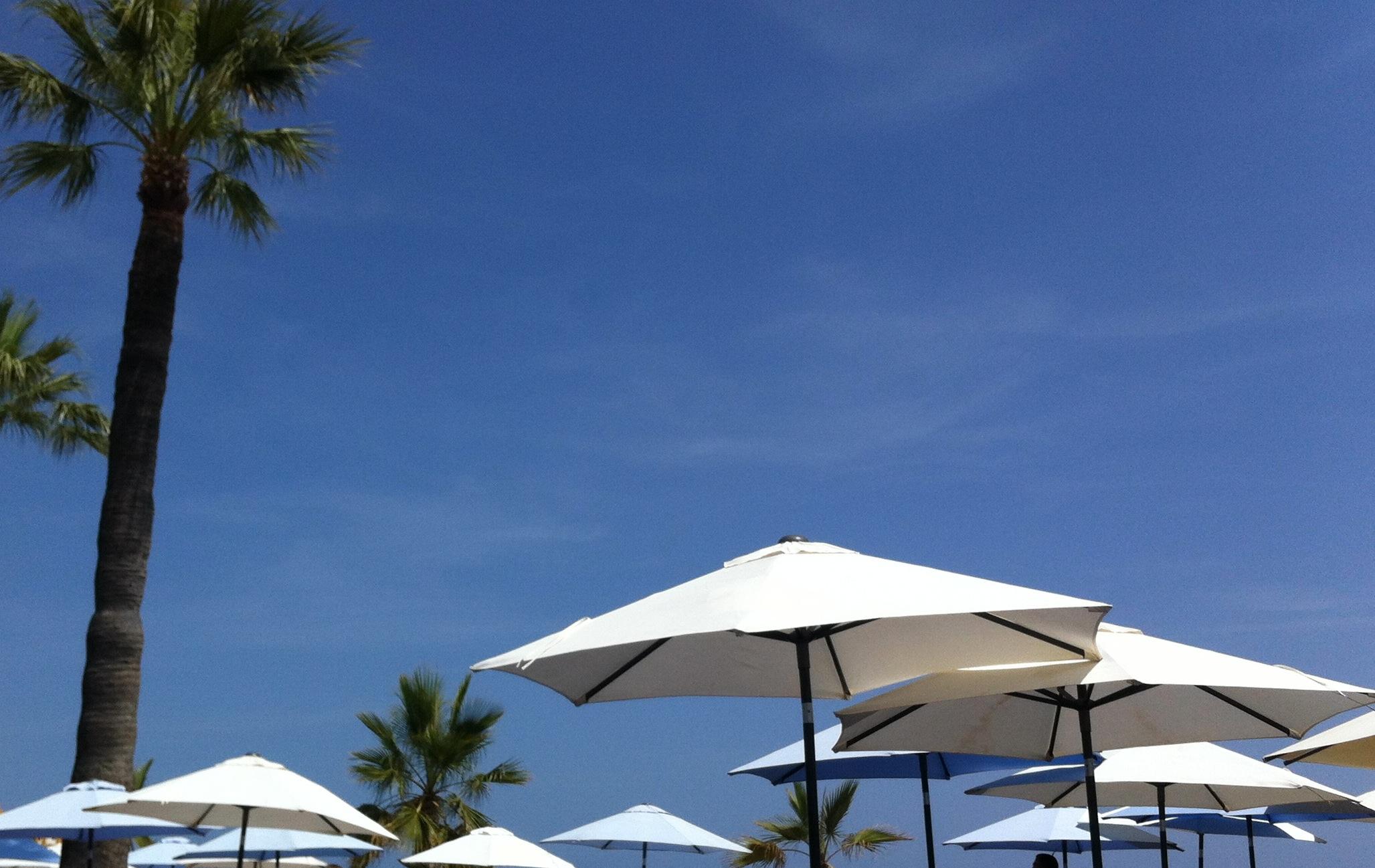 Ocean Club, Puerto Banus, Marbella Andrew Forbes