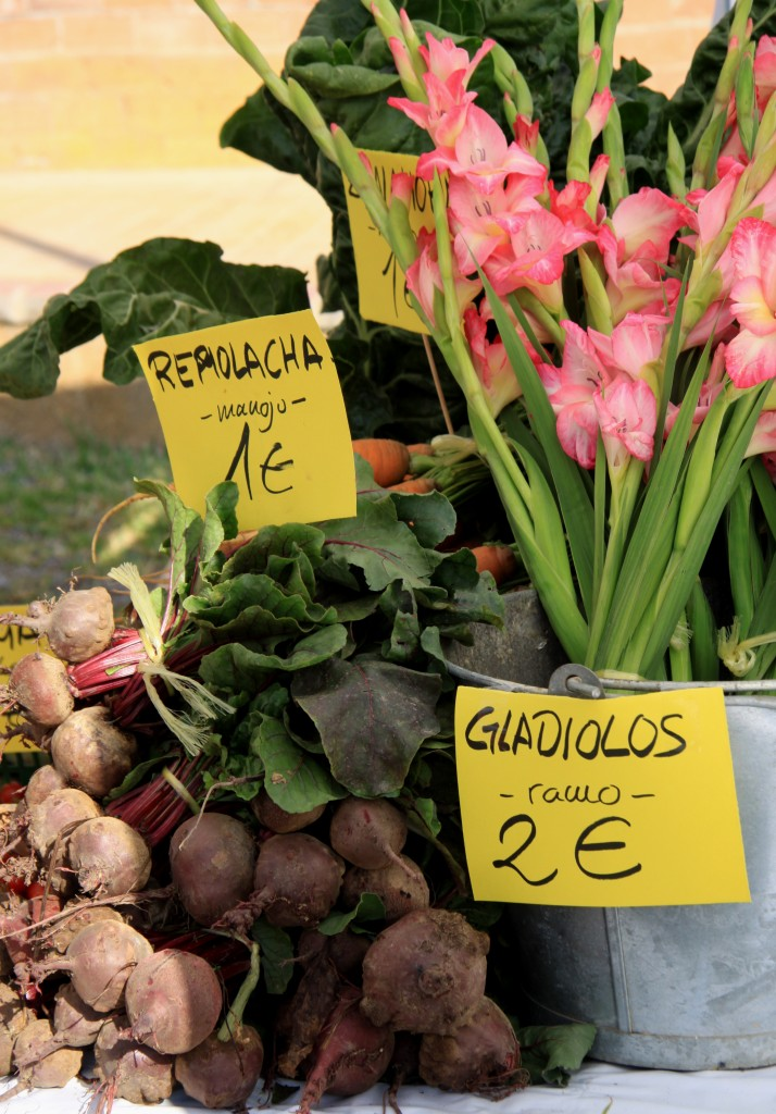 Transition Town Coin Malaga Organic Beet and Gladioli