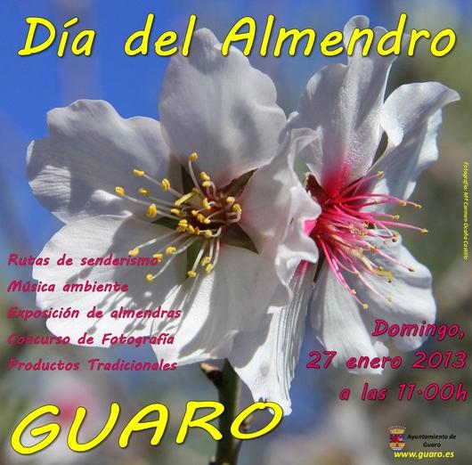 Dia del Almendro, Guaro 27 january 2013, 27 enero 2013