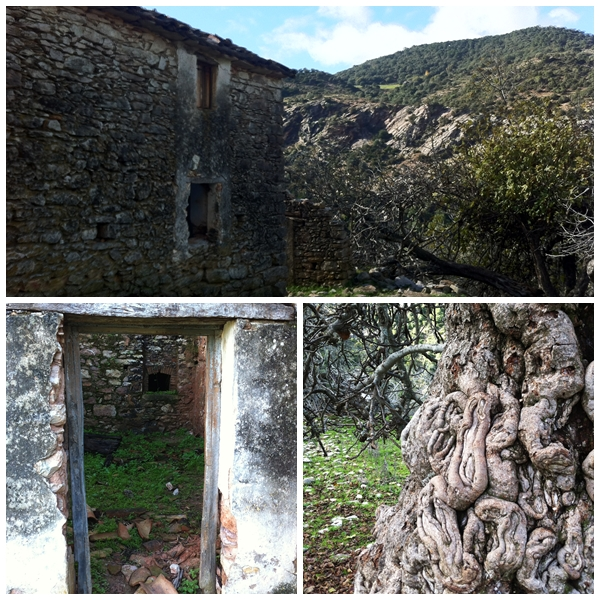 The Refuge - derelict Cottage on the way to the Cañon
