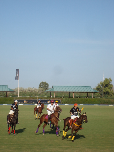Sotogrande_polo_wwwandrewforbescom