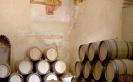 Bodega Descalzos Viejos Winery