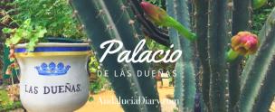 Casa De Las Duenas Copyright Andrew Forbes Andalucia Diary 1