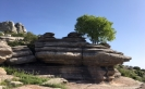 El Torcal Andrew Forbes Andalucia Diary 3
