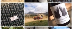 Andrew Forbes visits Samsara Wines
